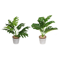 43CM FERN IN MOROCCAN POT 2ASST
