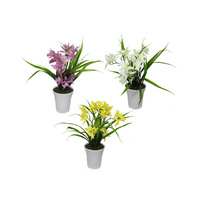 43CM ORCHID IN WHITE PLASTIC POT 3ASST
