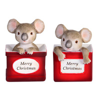 XMAS KOALA IN BOX 2ASST ONLY SOLD QTY4